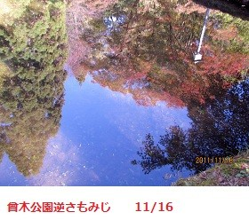f:id:mikawakinta63:20111116123246j:image:right