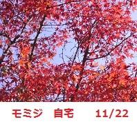 f:id:mikawakinta63:20111122133834j:image:left