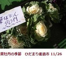 f:id:mikawakinta63:20111126112707j:image:right