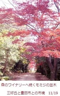 f:id:mikawakinta63:20111127120610j:image:left