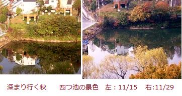 f:id:mikawakinta63:20111129163116p:image