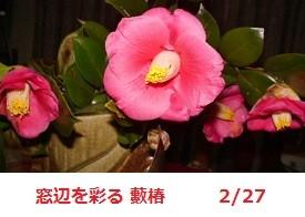 f:id:mikawakinta63:20120226211302j:image:left