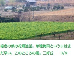 f:id:mikawakinta63:20120309164350j:image:left