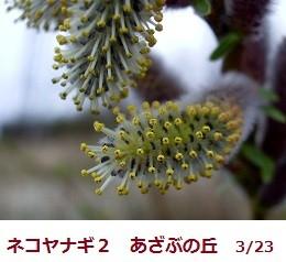 f:id:mikawakinta63:20120323094356j:image