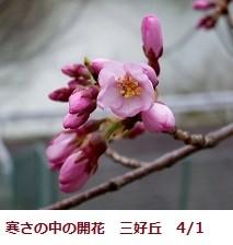 f:id:mikawakinta63:20120401113112j:image:left