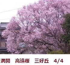 f:id:mikawakinta63:20120404090932j:image:left
