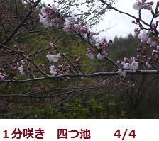 f:id:mikawakinta63:20120404093035j:image:right