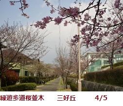 f:id:mikawakinta63:20120405125621j:image:left