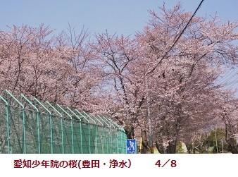 f:id:mikawakinta63:20120408132647j:image:left