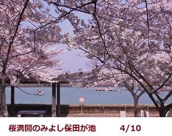 f:id:mikawakinta63:20120410101852j:image:right