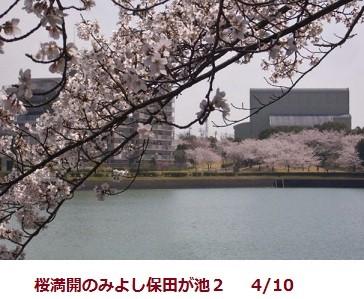 f:id:mikawakinta63:20120410102902j:image:left