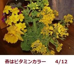 f:id:mikawakinta63:20120412154921j:image:right