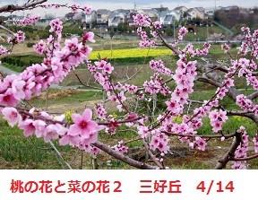 f:id:mikawakinta63:20120414163851j:image:right