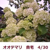 f:id:mikawakinta63:20120429175937j:image:right