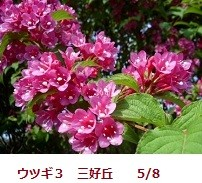 f:id:mikawakinta63:20120508091503j:image:right