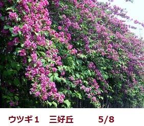 f:id:mikawakinta63:20120508091614j:image:right
