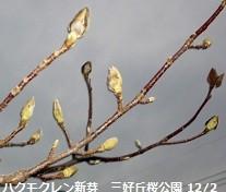 f:id:mikawakinta63:20121202165830j:image:right