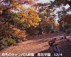 f:id:mikawakinta63:20121203084929j:image:right
