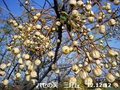 f:id:mikawakinta63:20121208100220j:image:left