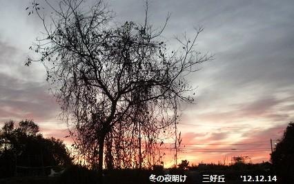f:id:mikawakinta63:20121214071026j:image
