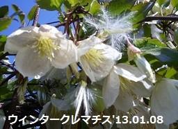 f:id:mikawakinta63:20130108132234j:image:right