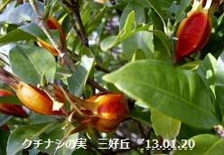 f:id:mikawakinta63:20130119095545j:image:right