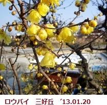 f:id:mikawakinta63:20130120100625j:image:right