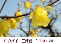 f:id:mikawakinta63:20130120100722j:image:left