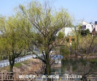 f:id:mikawakinta63:20130319092502j:image