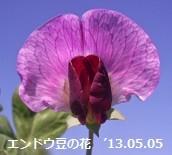 f:id:mikawakinta63:20130502220154j:image:left