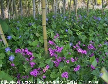 f:id:mikawakinta63:20130503224112j:image:right
