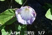 f:id:mikawakinta63:20130507021330j:image:left