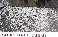 f:id:mikawakinta63:20130511224840j:image:left