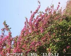 f:id:mikawakinta63:20130511232639j:image:right