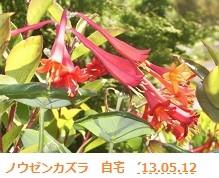 f:id:mikawakinta63:20130512025820j:image:right