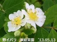 f:id:mikawakinta63:20130512233913j:image:right