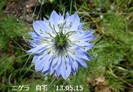 f:id:mikawakinta63:20130514000624j:image:right