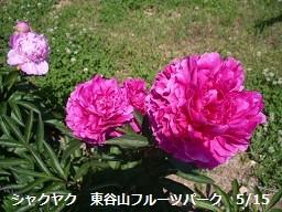 f:id:mikawakinta63:20130515020223j:image:left