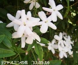 f:id:mikawakinta63:20130515234627j:image:right