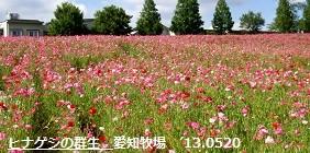 f:id:mikawakinta63:20130520040732j:image:right