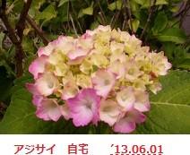 f:id:mikawakinta63:20130531231104j:image:left