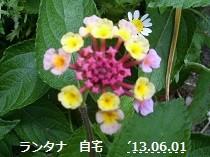 f:id:mikawakinta63:20130602003235j:image:right