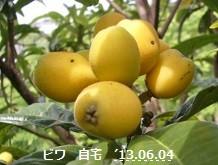 f:id:mikawakinta63:20130602003543j:image:right