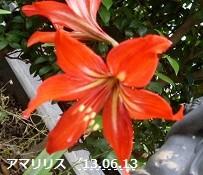 f:id:mikawakinta63:20130606020202j:image:left