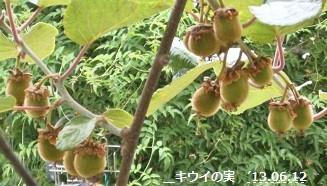 f:id:mikawakinta63:20130611005640j:image:left