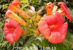 f:id:mikawakinta63:20130613002128j:image:left