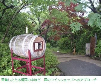 f:id:mikawakinta63:20130620215654j:image:right