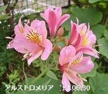 f:id:mikawakinta63:20130629223916j:image:right