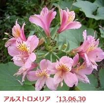 f:id:mikawakinta63:20130629223933j:image:left