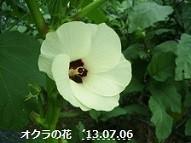 f:id:mikawakinta63:20130705235453j:image:right